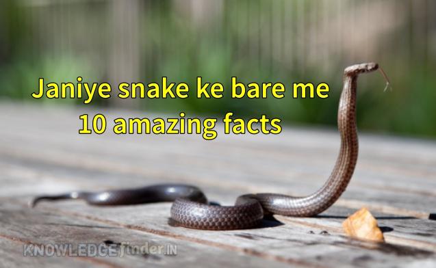 snake ke bare me 10 amazing facts
